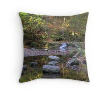 Fall Creek Gorge - Waterfall #5 Throw Pillow