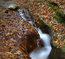 Fall Creek Gorge - Carved Rock#1 by Jeff VanDyke