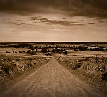 Forty Miles by Paul Thompson