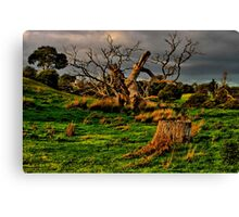 """Evening On The Floodplain"" Canvas Print"