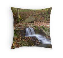Fall Creek Gorge - Waterfall #8 Throw Pillow
