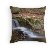 Fall Creek Gorge - Waterfall #9 Throw Pillow