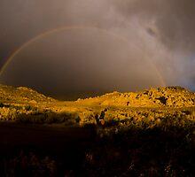 Rainbow by taylorswift