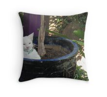 Kitty in the Palms Throw Pillow