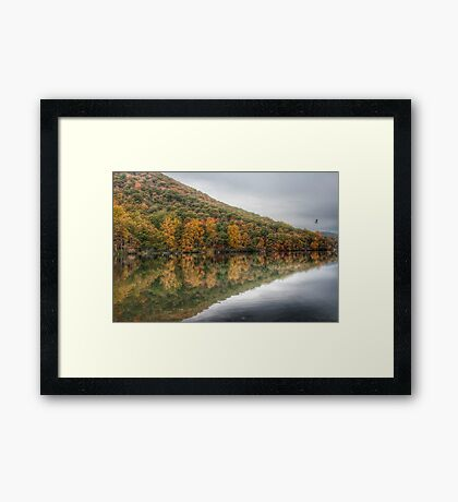 Flying Through Autumn (HDR Version) Framed Print