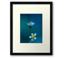 Bleu. Framed Print