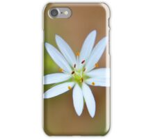 Star Chickweed iPhone Case/Skin