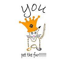 You!!!!!....pet the fur!!!!! Photographic Print