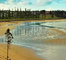 Cosy Corner, Front Beach, Torquay, Australia by Andy Berry