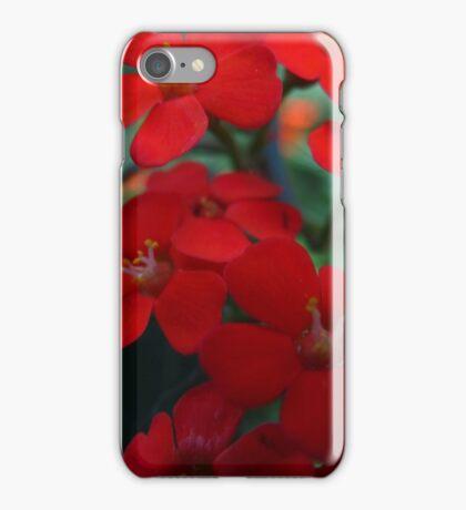 Orange zest iPhone Case/Skin