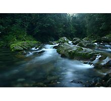 Williams River, Barrington Tops, NSW, Australia Photographic Print