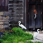 A Little Rustic Charm by Debbie Oppermann