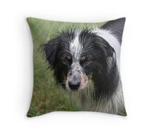 Wet dog stare Throw Pillow