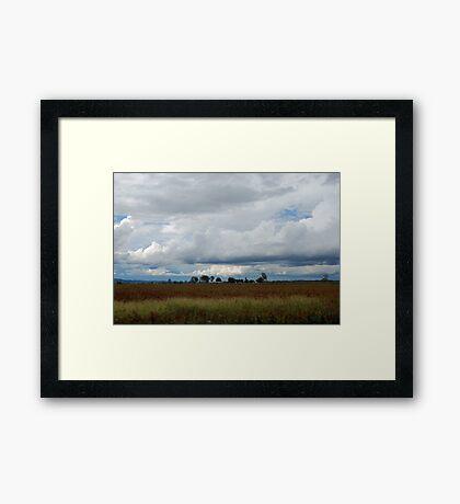 Under an Australian sky Framed Print