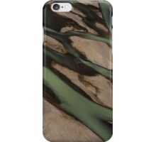 Braided River from above iPhone Case/Skin