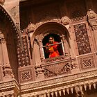 Palace windows in Rajasthan by amulya