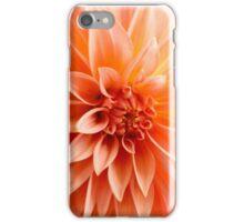 Glorious sun-burst orange chrysanthemum iPhone Case/Skin