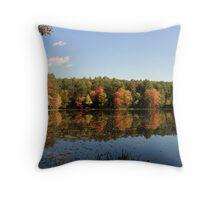 New Hampshire Foliage 2008 #12 Throw Pillow