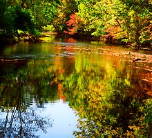 Fall Impressions by Mary Campbell