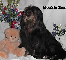 Mookie Bear - Posing for picture to hand out when working by Marie Terry