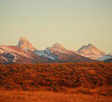 The Amazing Tetons by Serenity Stewart