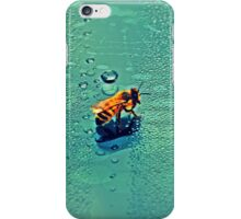 Bee On A Car Windscreen iPhone Case/Skin