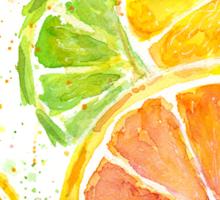 Citrus Watercolor Sticker