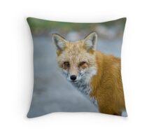 Alpha Fox Throw Pillow