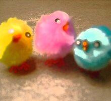 chicks by Lauren Rosa