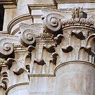 Detail by Manuel Gonçalves