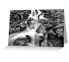 Black and White No. 30 Greeting Card