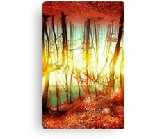 Endless Forest Canvas Print