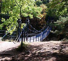A Suspension Bridge by dougie1