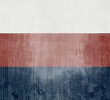 Grunge Flag Of Russia by Olga Altunina