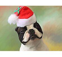 Jack Christmas Photographic Print