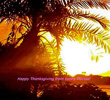 Happy Thanksgiving from sunny Florida by ♥⊱ B. Randi Bailey