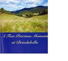 A Few Precious Moments at Brindabella by Beverley Johnson