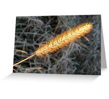 Golden Arrow Greeting Card