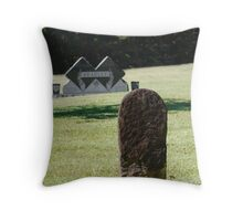 The Old & The New Throw Pillow