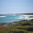 West Beach Shoreline- Croajingolong National Park by salsbells69