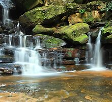 Somersby Falls by Leah-Anne Thompson