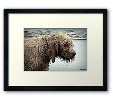 Can Someone Get Me A Towel Please! Framed Print