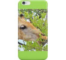 Giraffe - African Wildlife - Pleasure of Food iPhone Case/Skin