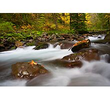 Autumn Surge Photographic Print