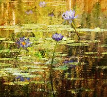 Textured Water Lilies by Marilyn Harris