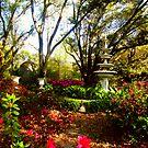 Dream Garden by Michael Reimann