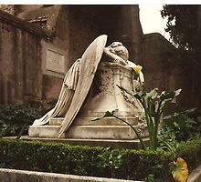 Weeping Angel by MCCarruthers