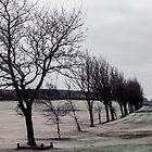 Norland Golf Course - Winter Scene by Glen Allen