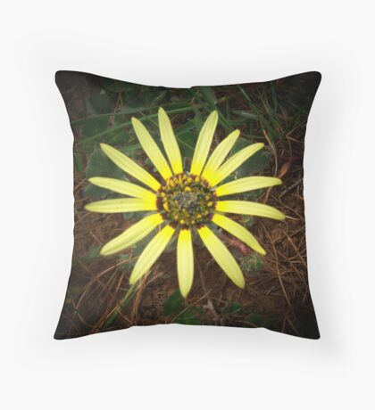 sunshine on a dull day Throw Pillow