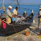 Unloading the fish catch, Tamil Nadu, India by indiafrank